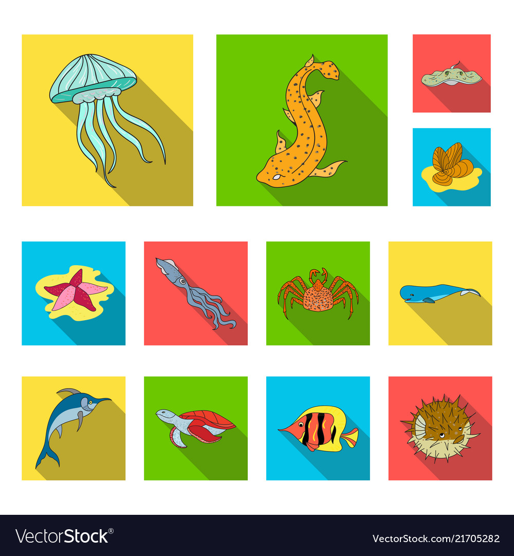 A variety of marine animals flat icons in set