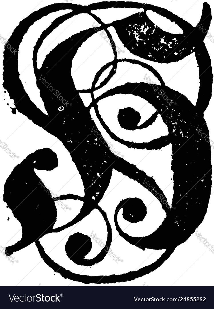 Vintage drawing or engraving antique