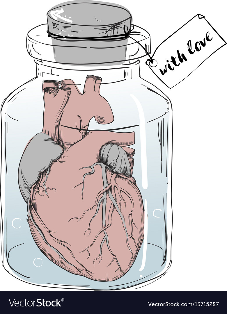 Heart - funny anatomy joke Royalty Free Vector Image