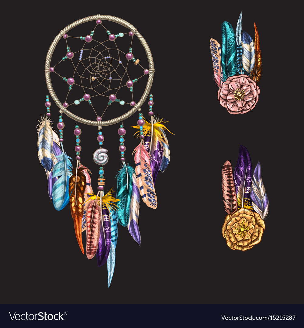 Luxary ornate dreamcatcher with feathers vector image