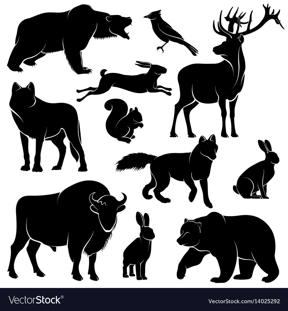 Forest Animals For Wood Design Zoology Vector Image On Vectorstock