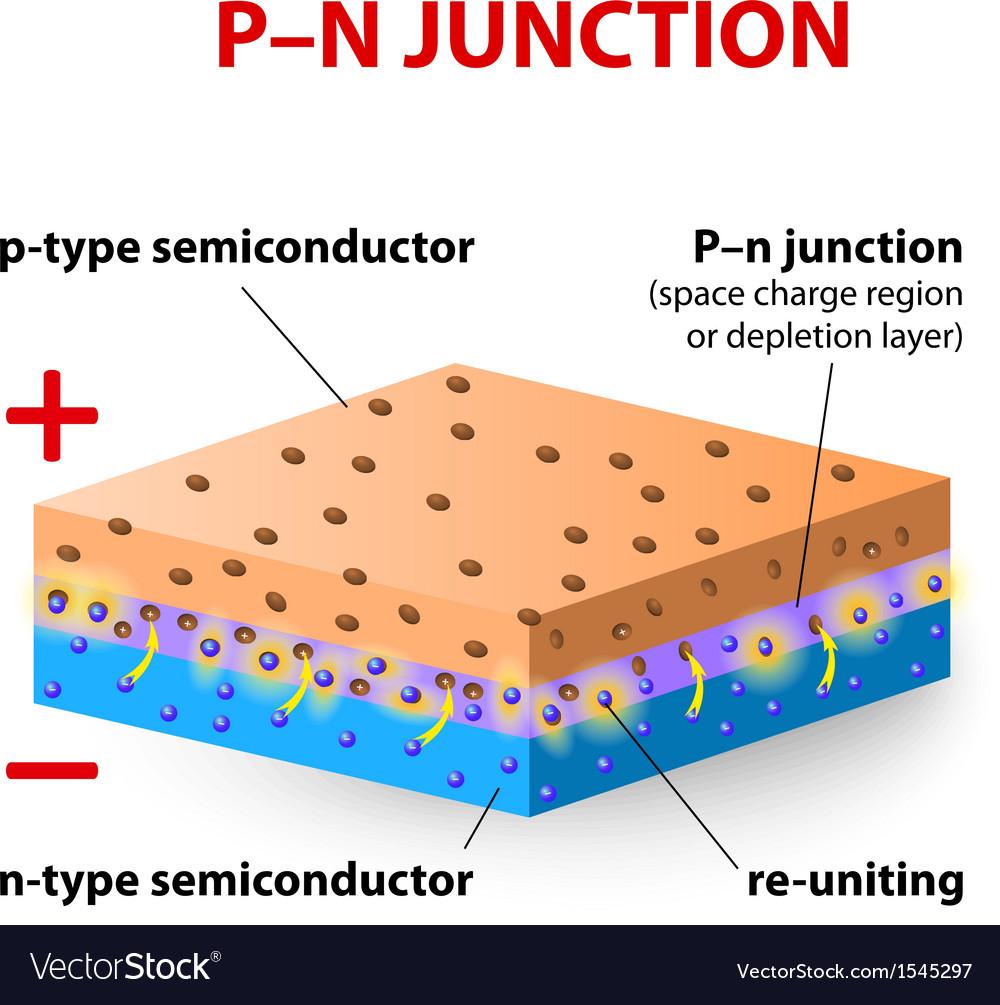P N Junction Royalty Free Vector Image Vectorstock Understanding The Pn