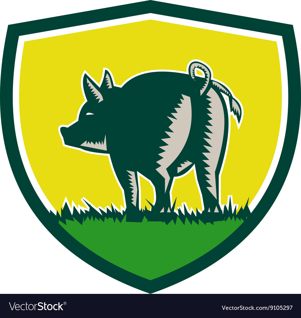 Pig Tail Rear Crest Woodcut vector image