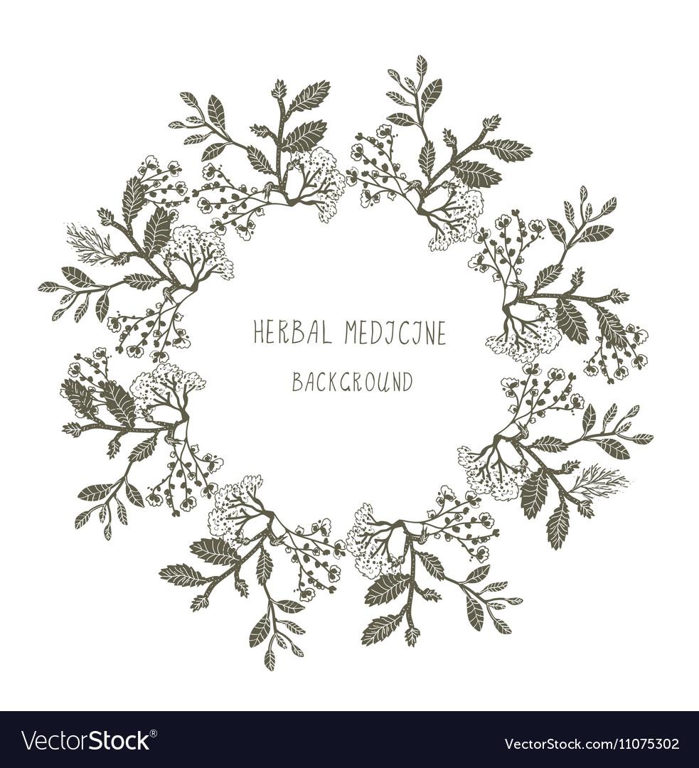 🌱 Sketchy medicine download | SketchyMedical videos  2019-03-25