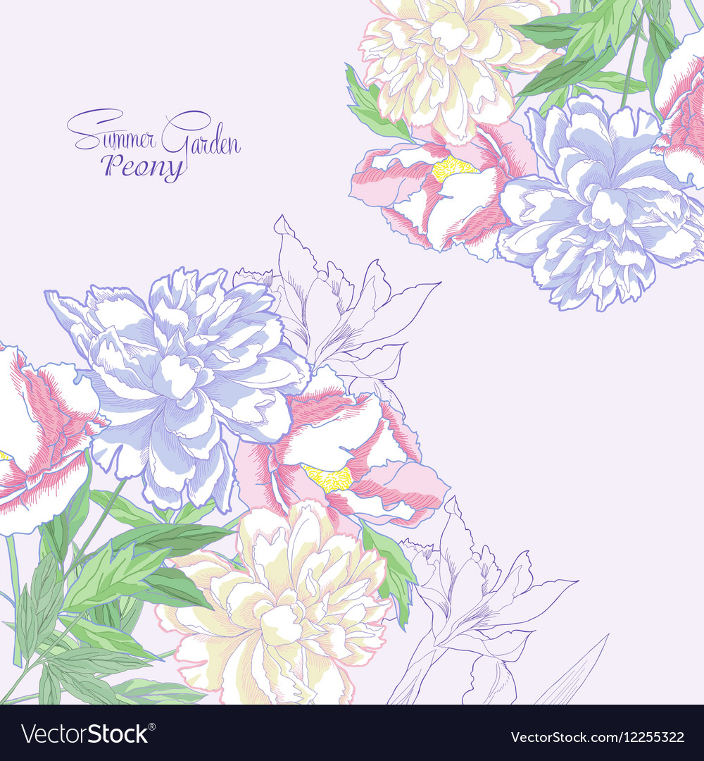 Background with color peonies and irises-04 vector image