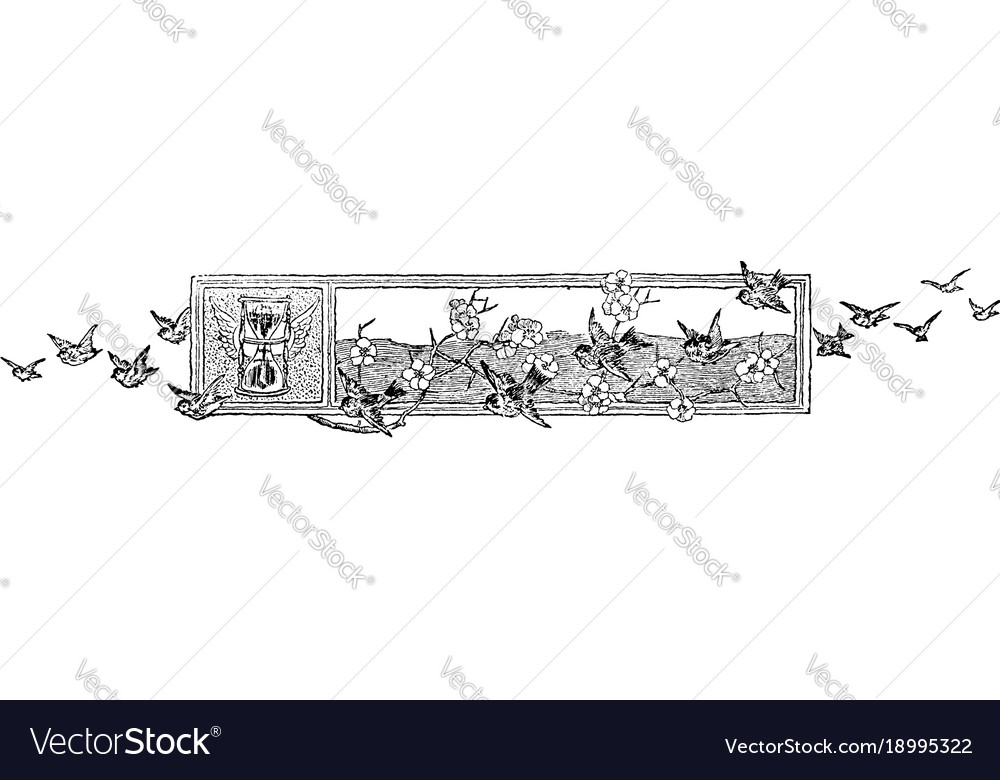 Header footer have a flock of birds flying across vector image