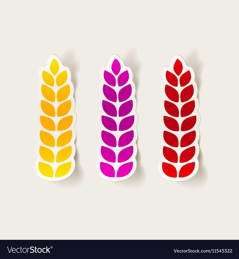 Realistic design element ears of wheat