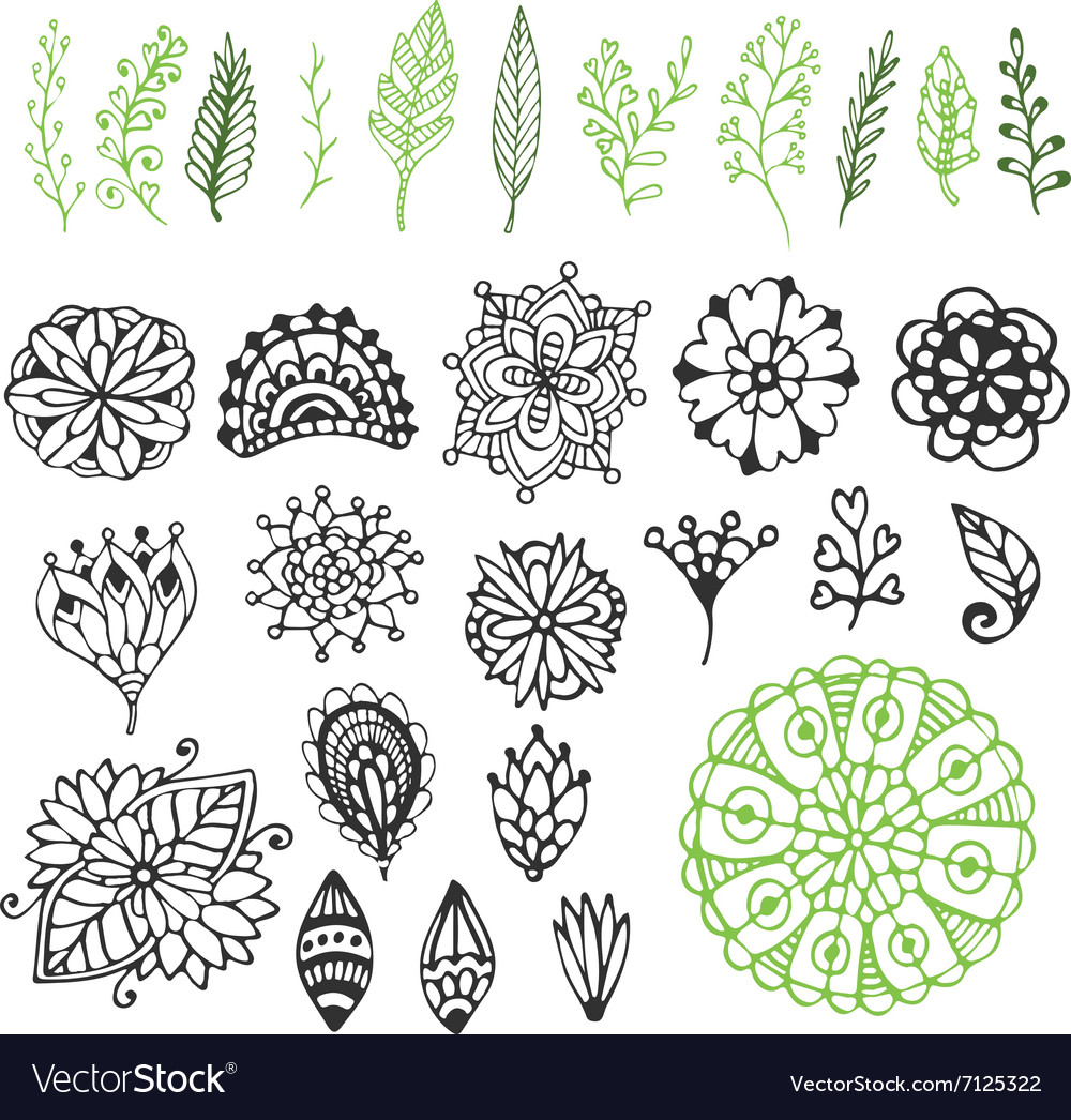 Zentangle nature collection Hand drawn