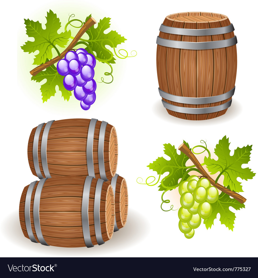 Wooden barrels and grape vector image