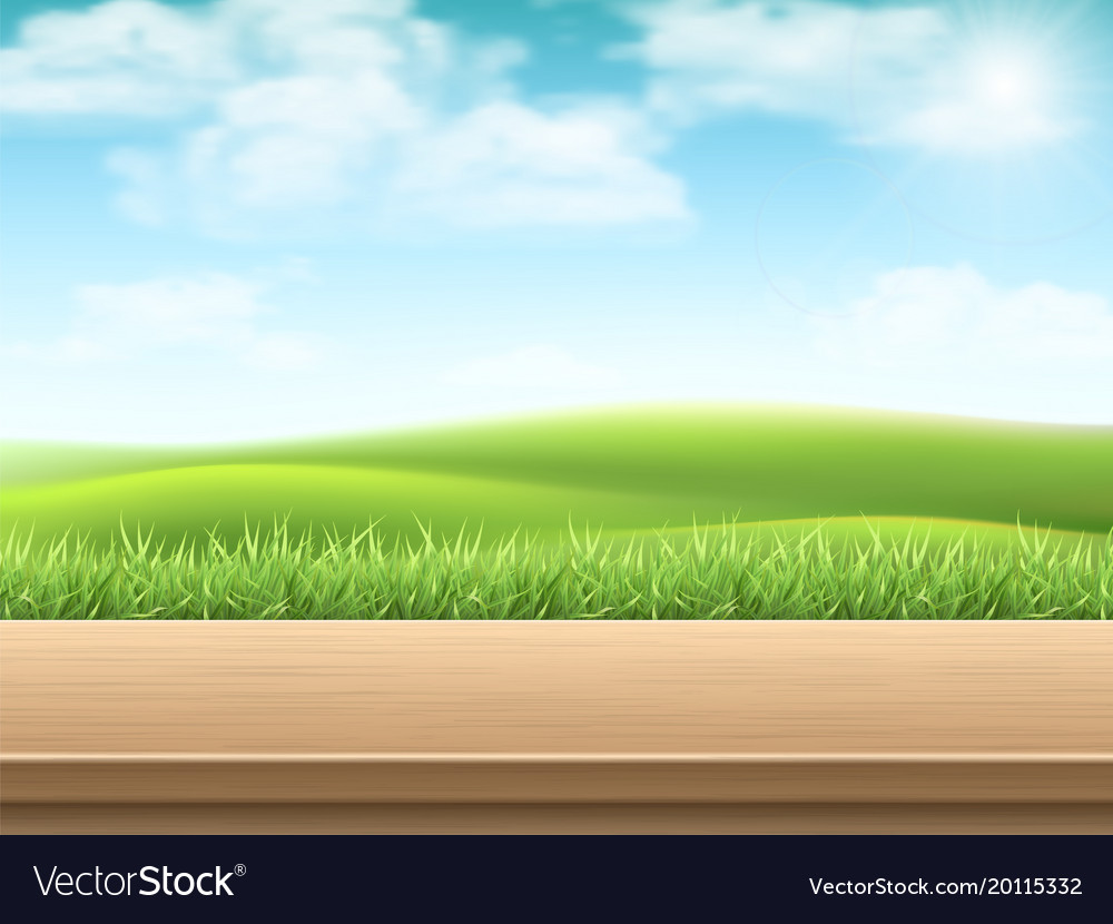 Empty wooden table on landscpe background vector image