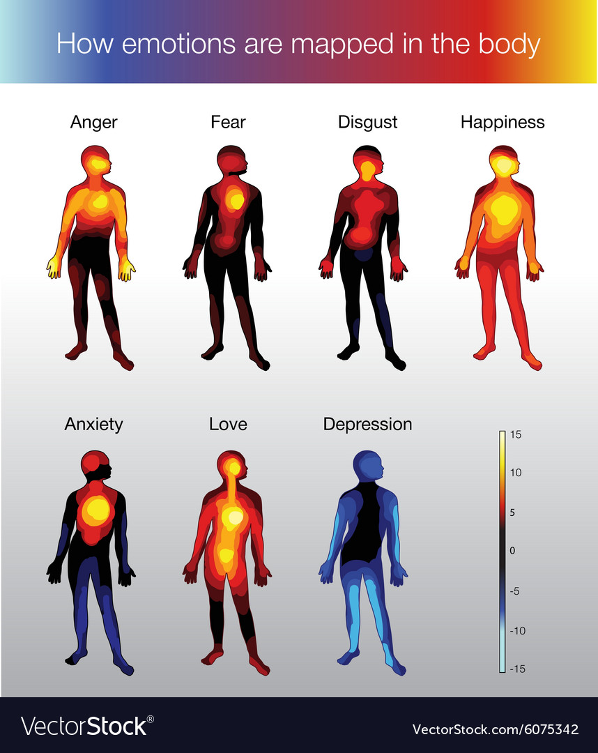 Heat map of the human body depending on the