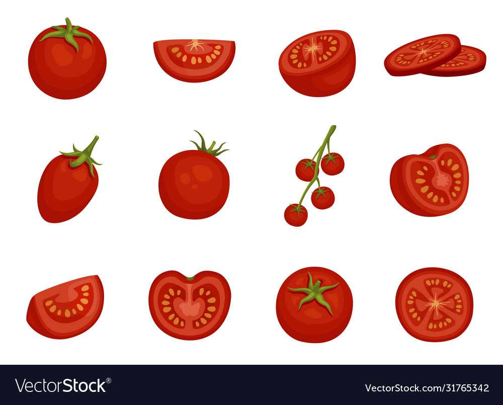 Tomato red vegetable set in different slices