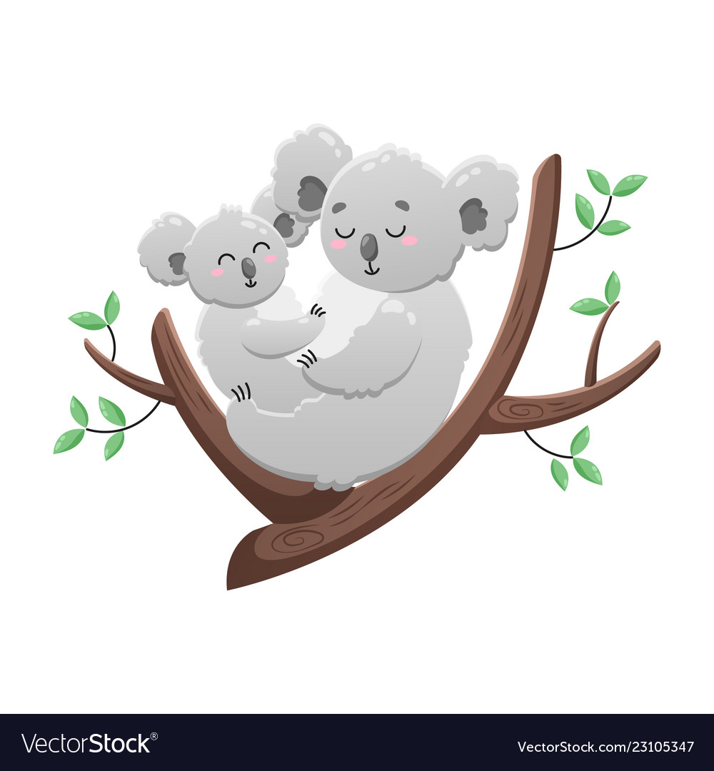 Cute cartoon koala mom and baby isolated Vector Image