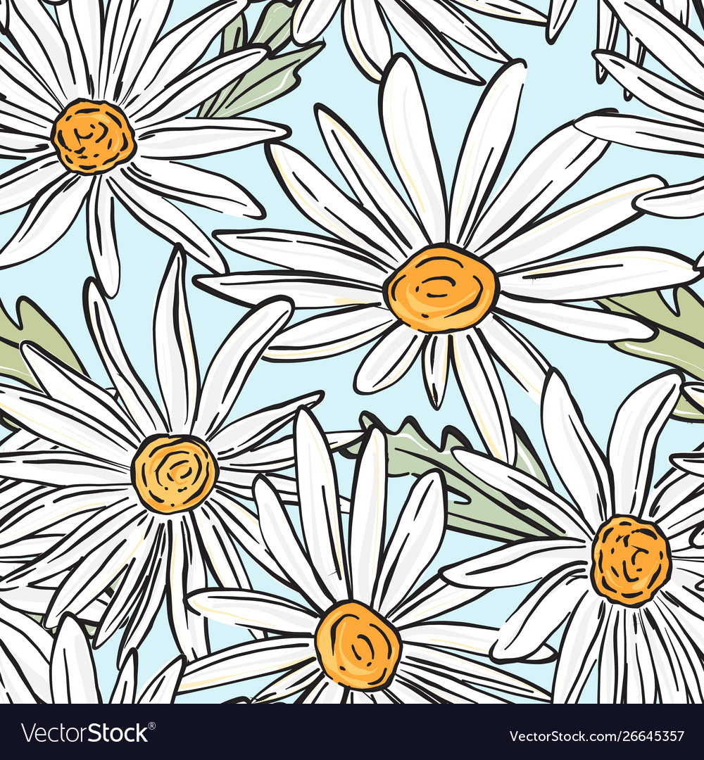 Chamomile bloom pattern summer abstract botany