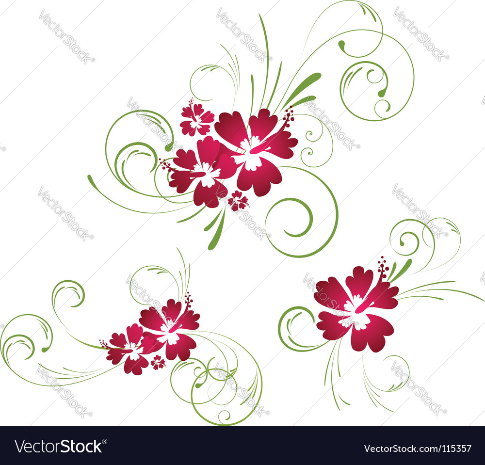 Hibiscus floral elements