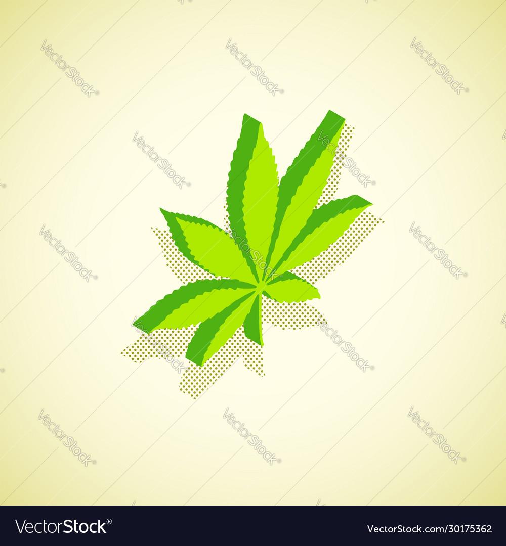 Cannabis marijuana isometric design