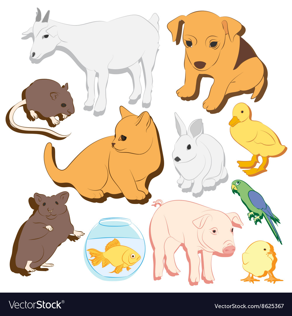 Animals pets colorful icons set