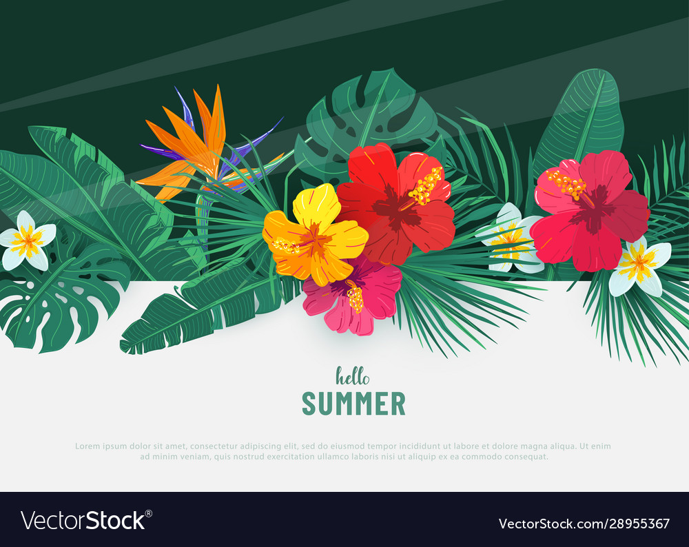 Summer tropical background flat lay