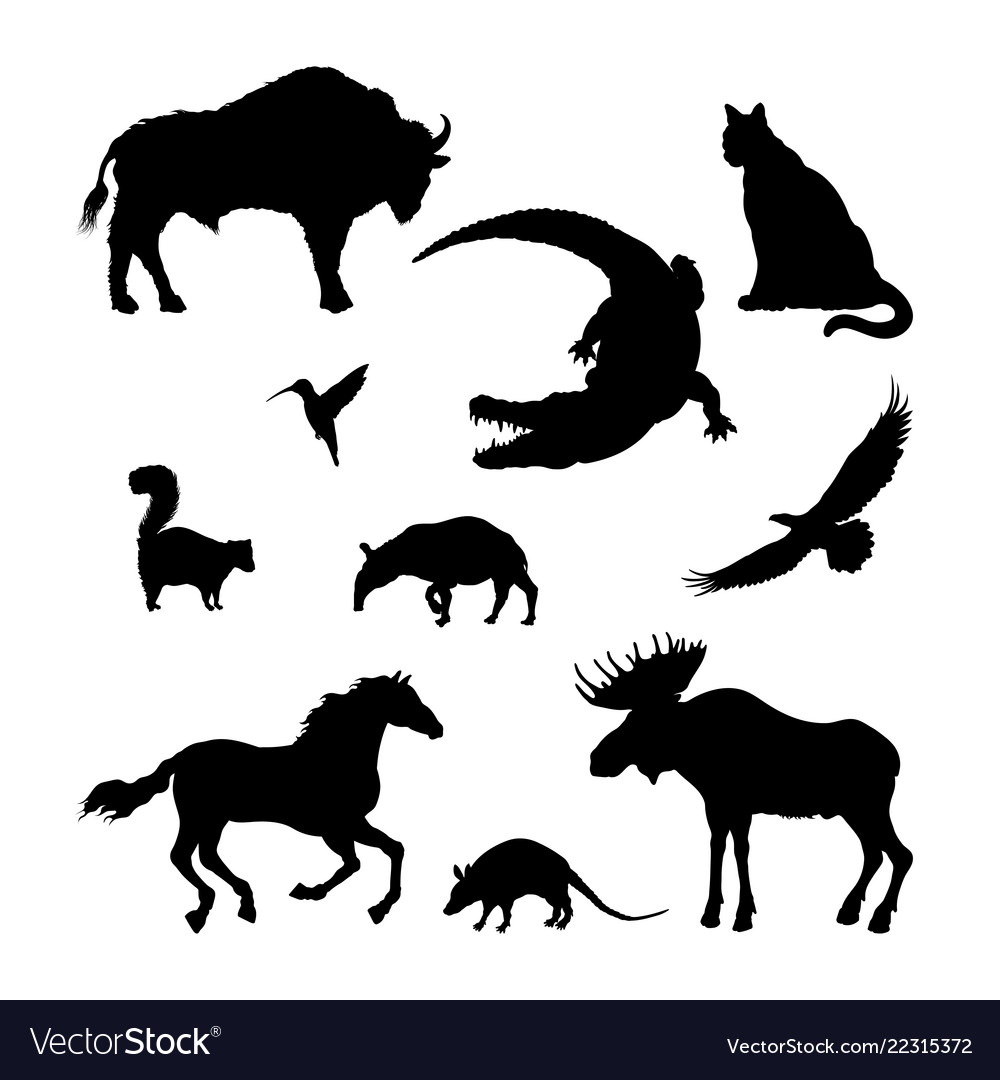 Black silhouettes north american animal