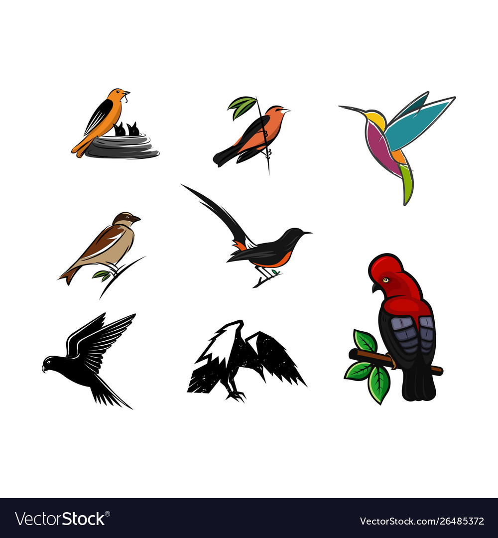 Set bird logo