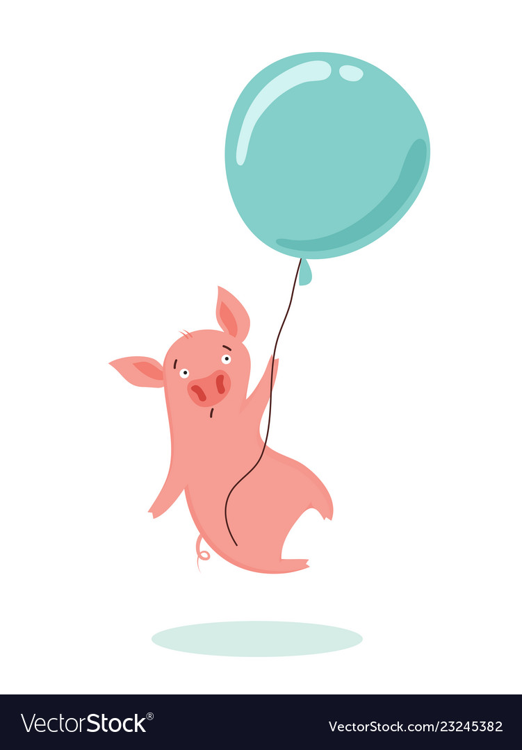 Sweet scared little pig is flying in a hot air