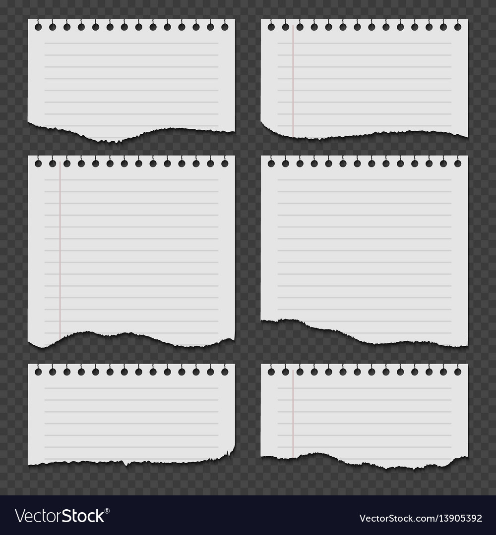notebook papers with torn ripped edge set vector image