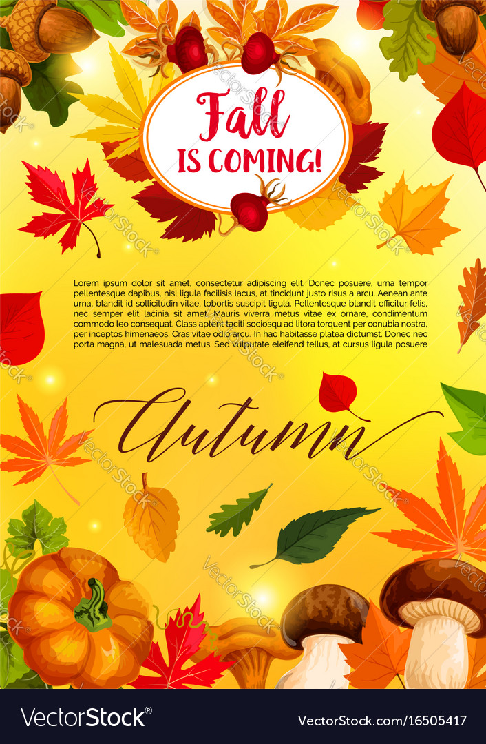 autumn leaf and harvest vegetable banner template vector image