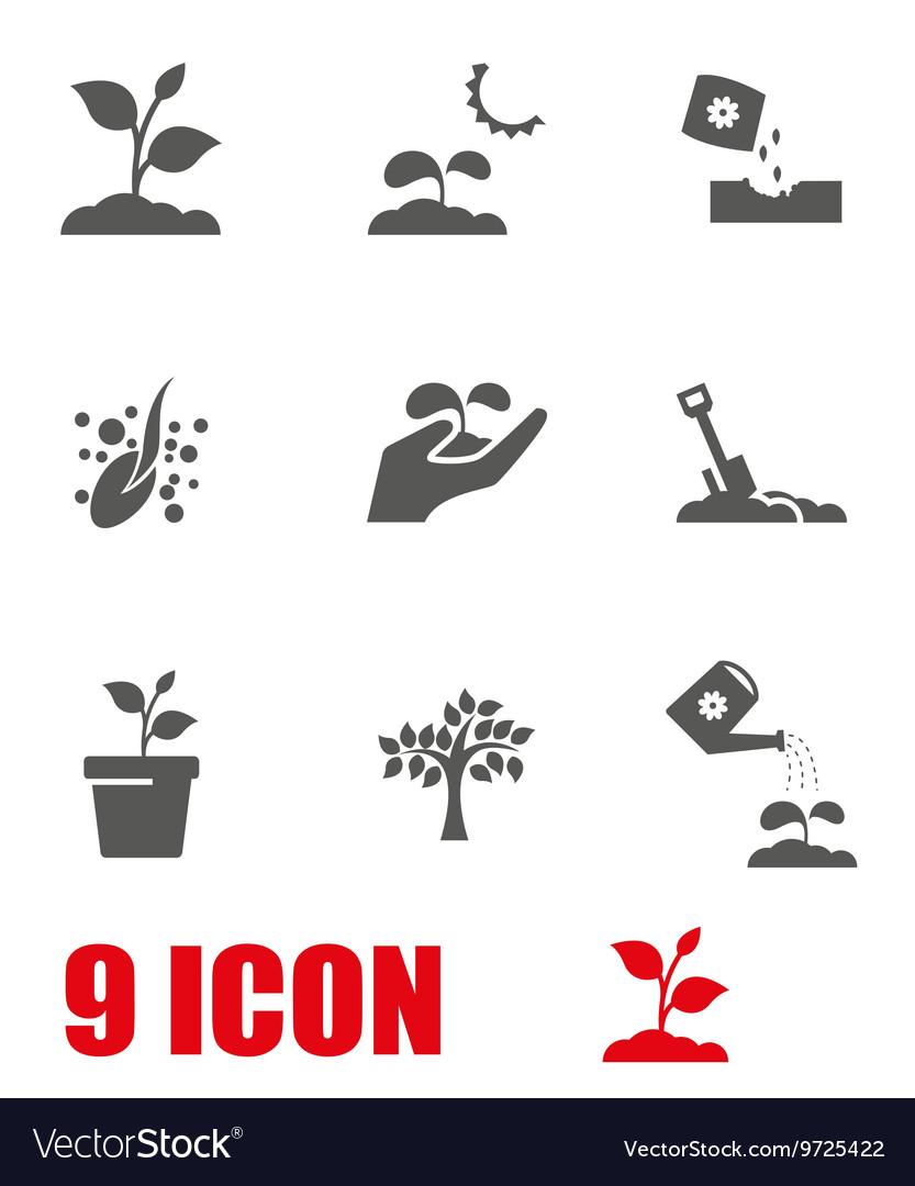 Grey growing icon set