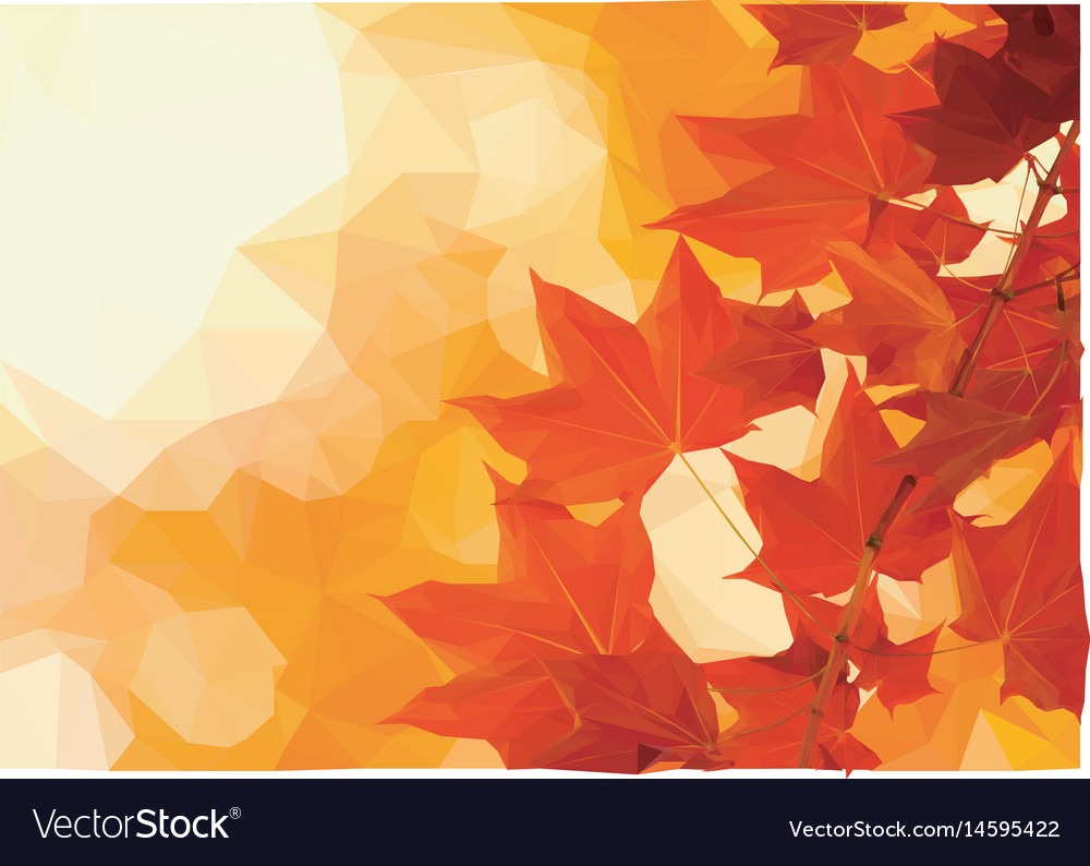 October leaves vector image