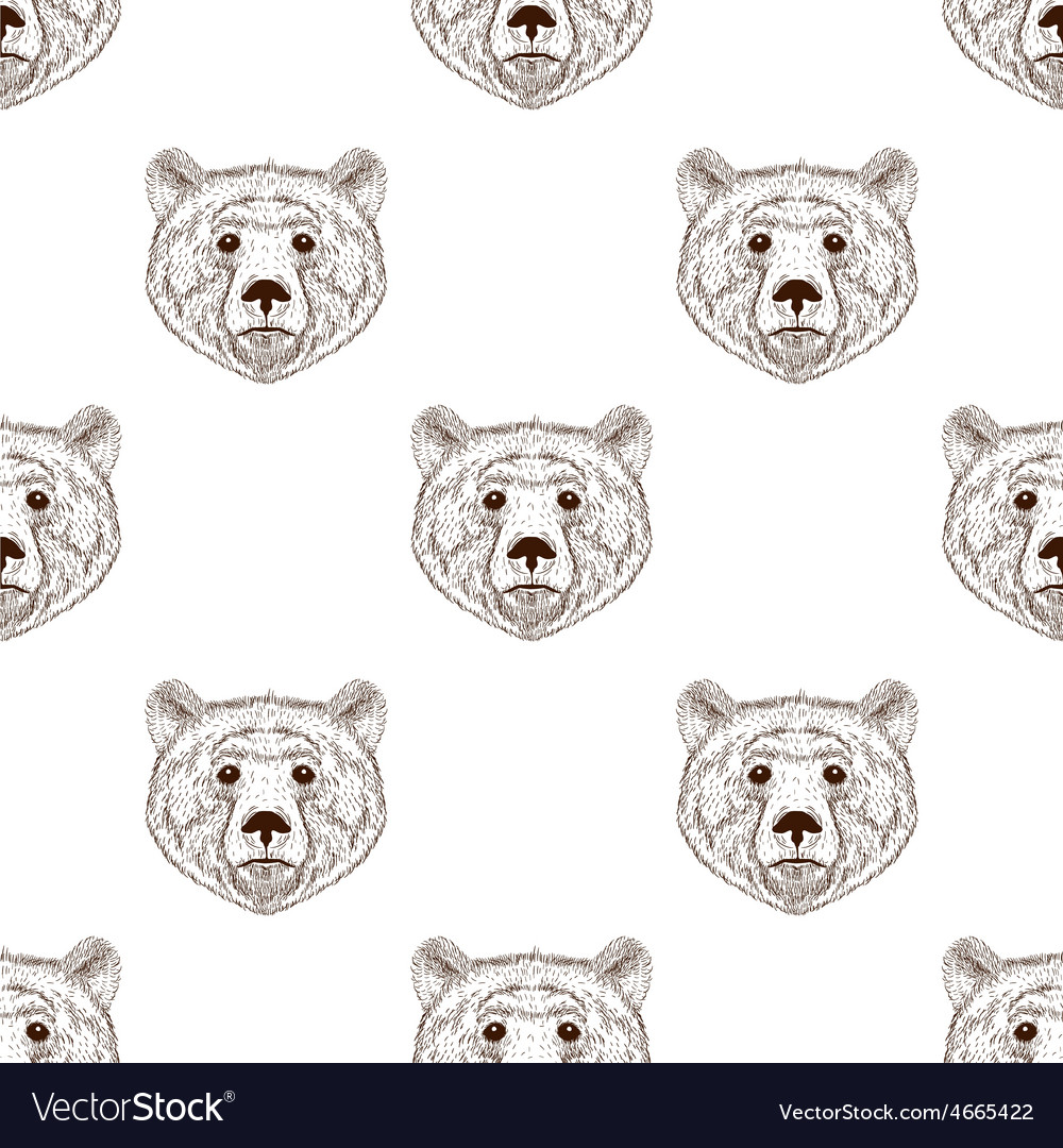 Sketch realistic face brown Bear seamless pattern vector image
