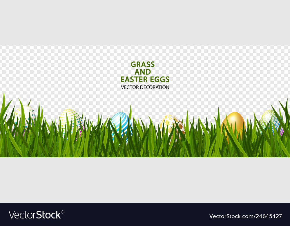 Green grass with easter eggs on transparent