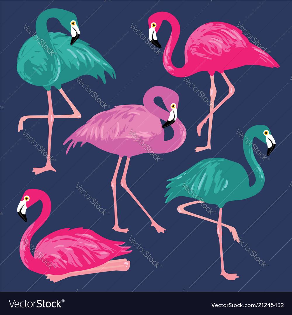 Set with pink flamingos hand drawn