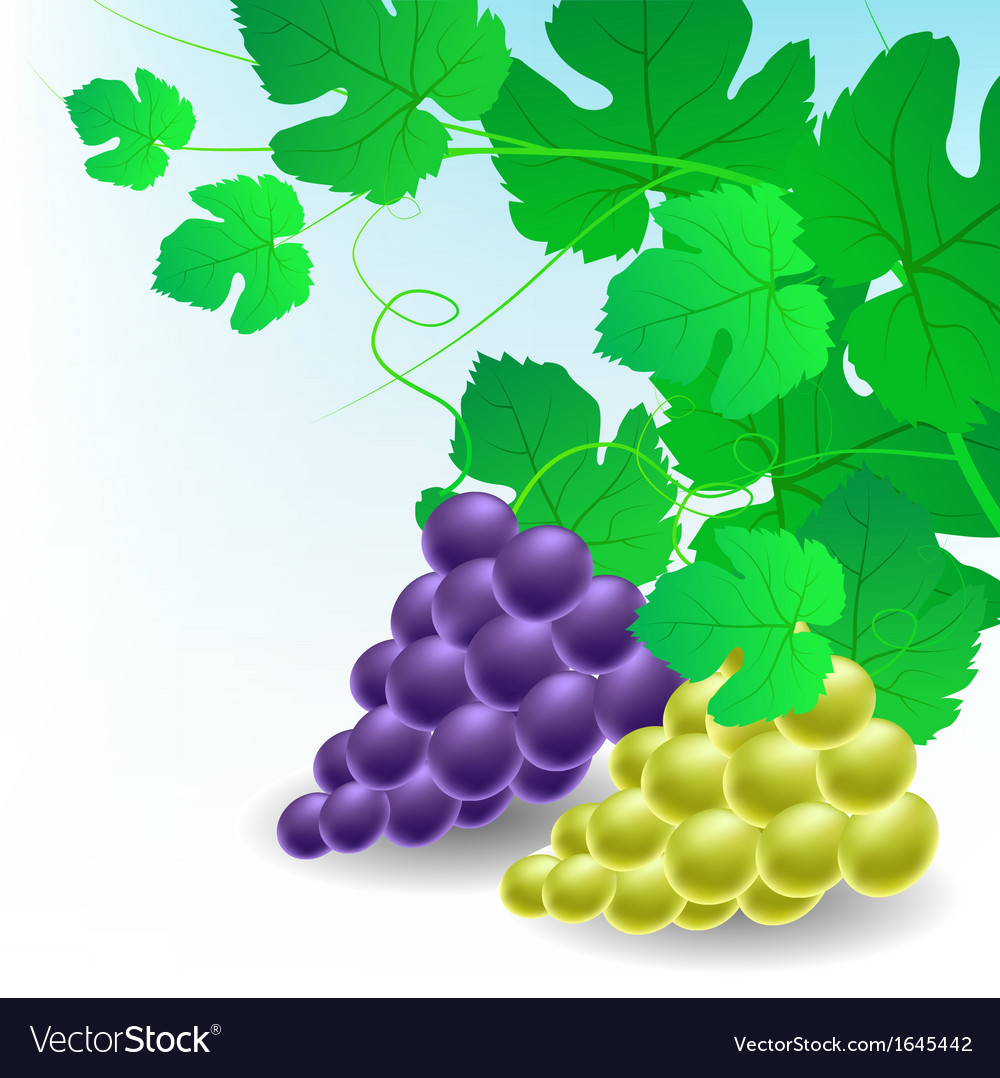 Corner decoration with grapes