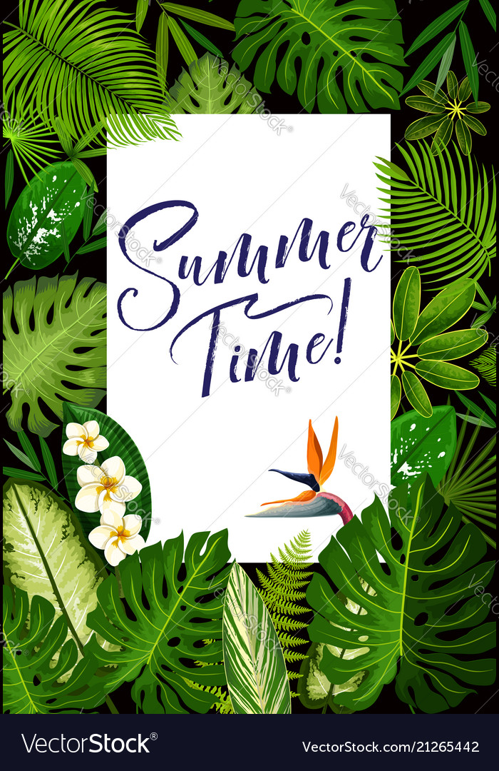 Summer banner with tropical palm and exotic flower vector image