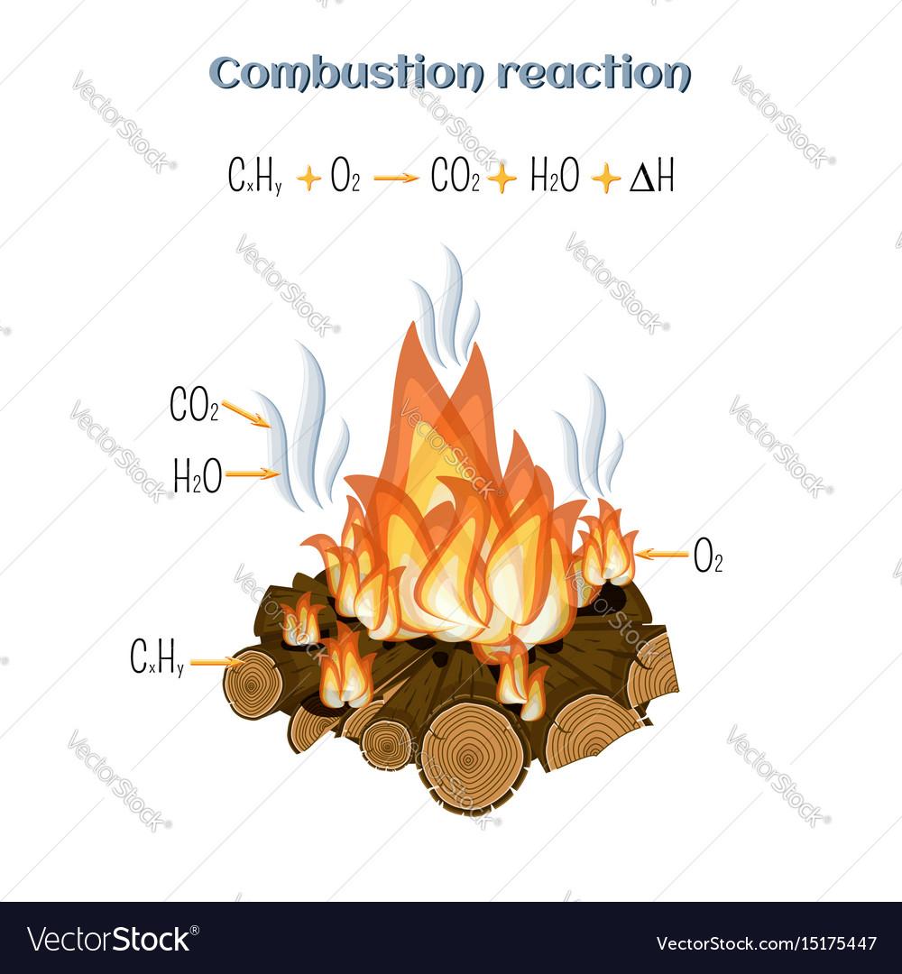 Combustion reaction - wood bur...