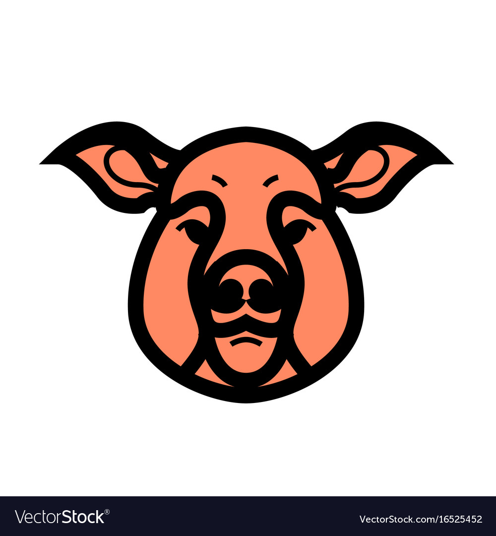 Color image of swine or pig head