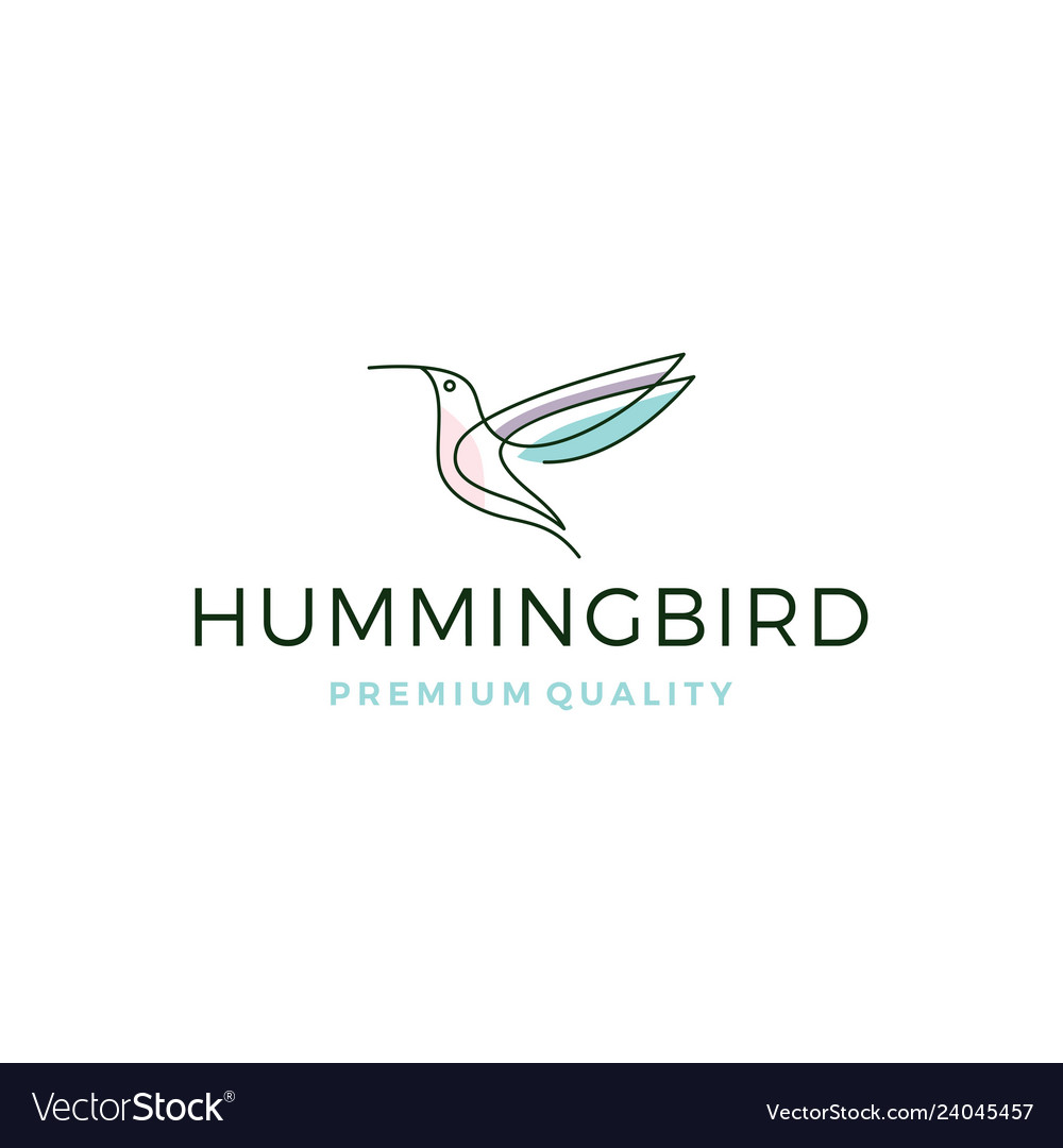 Hummingbird colibri bird logo line outline