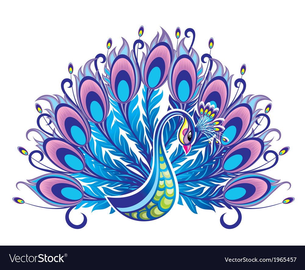 peacock royalty free vector image vectorstock rh vectorstock com peacock vector art peacock vector images