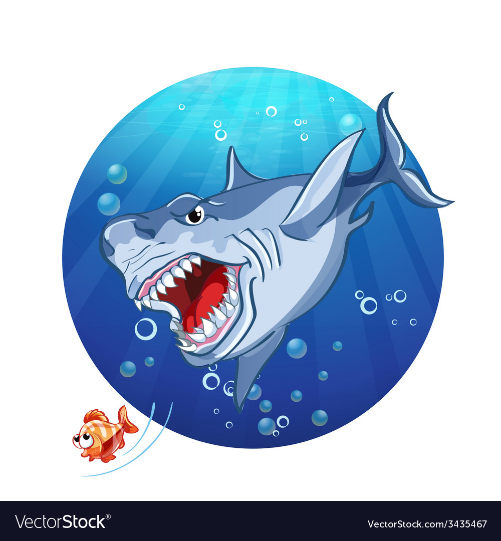A shark chase the little fish