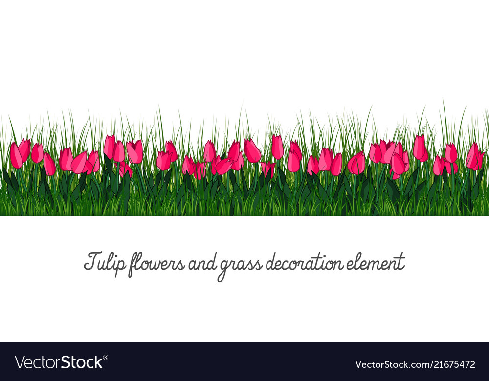 Tulip and grass decoration element