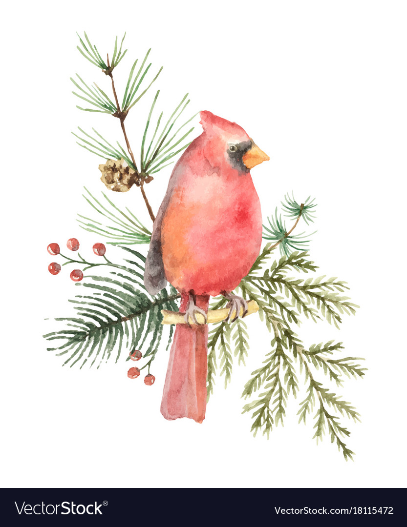 Watercolor christmas bouquet with bird vector image