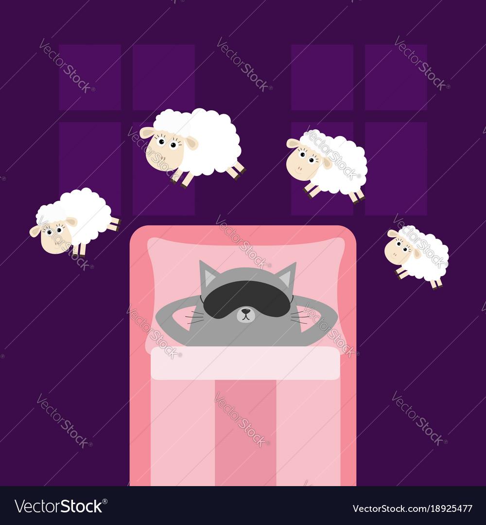 Cute gray cat sleeping mask jumping sheeps cant