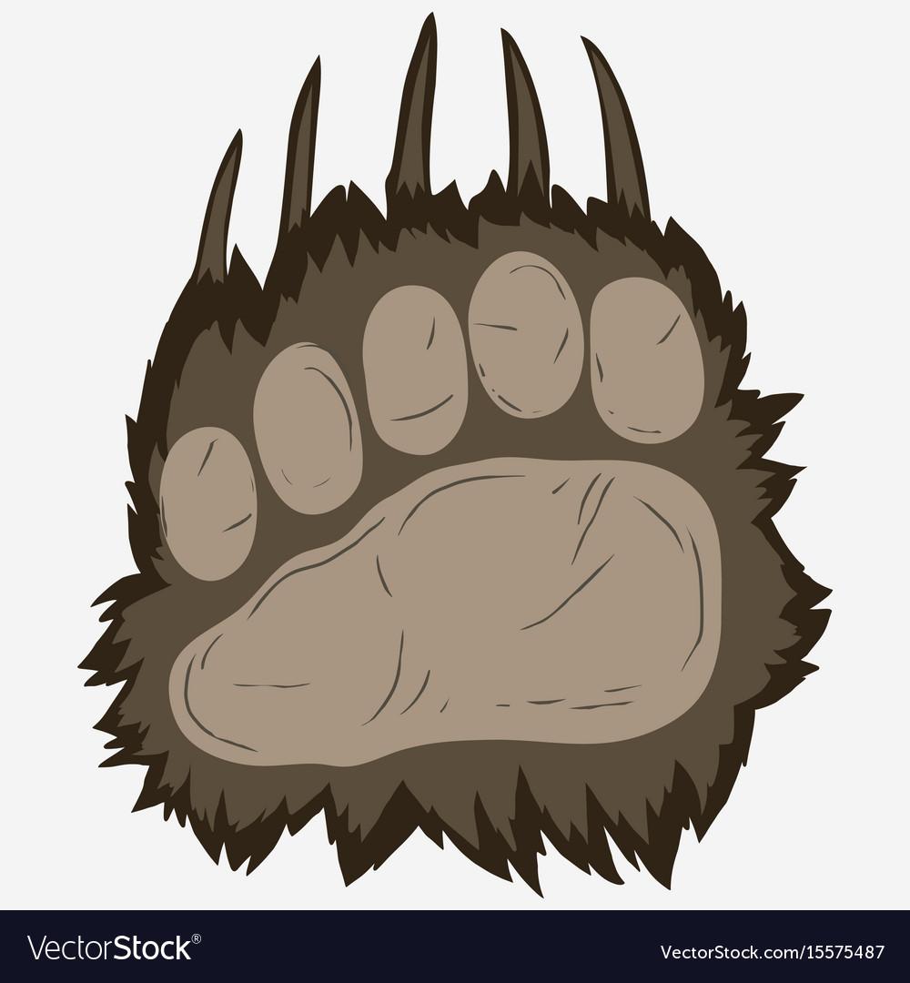 Bear footprint grizzly paw print