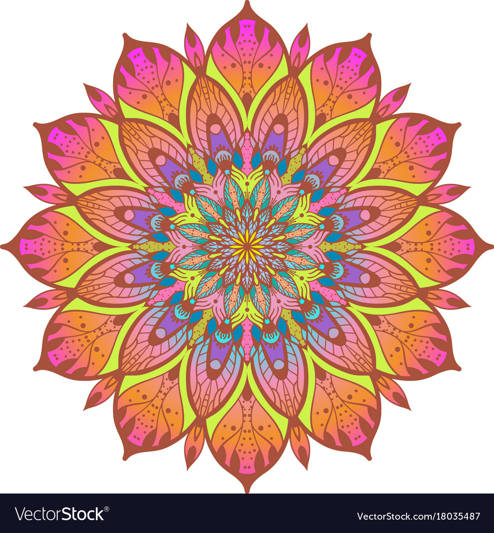 flower color mandala royalty free vector image