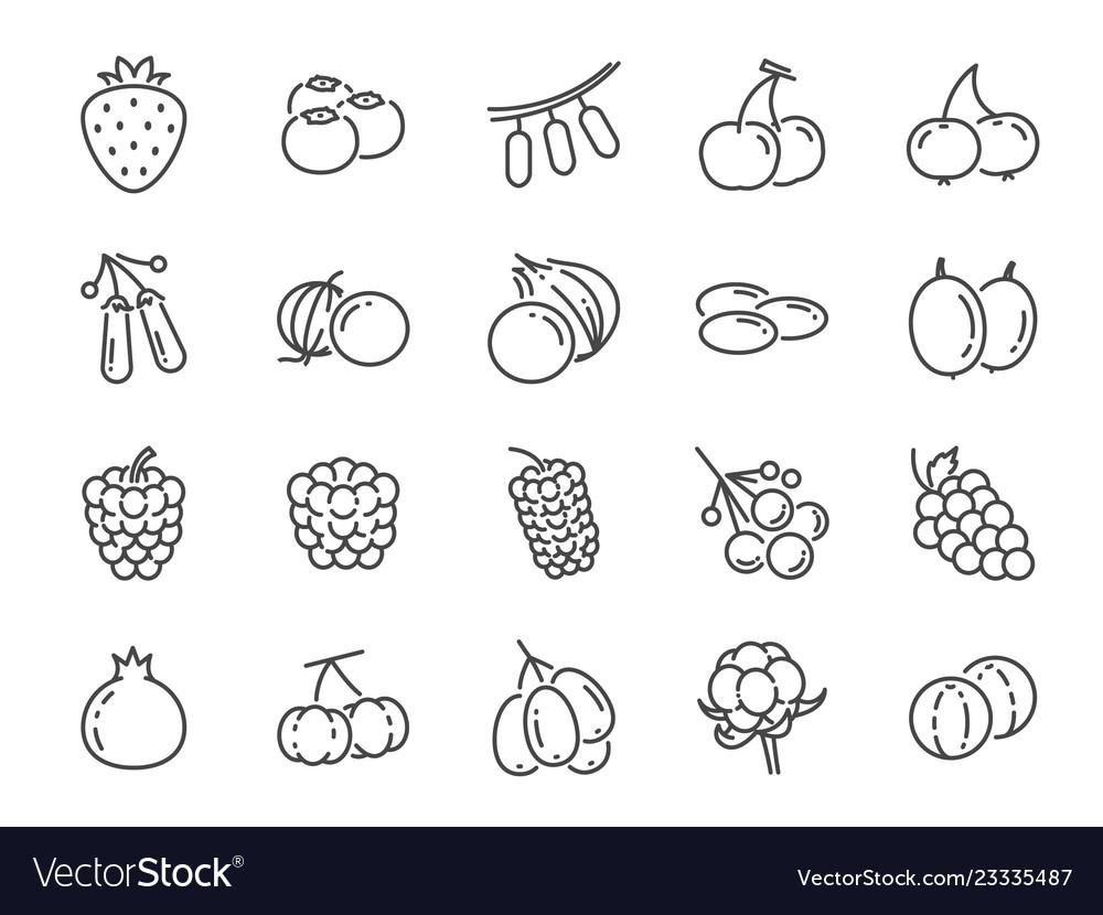 Wild berry line icon set