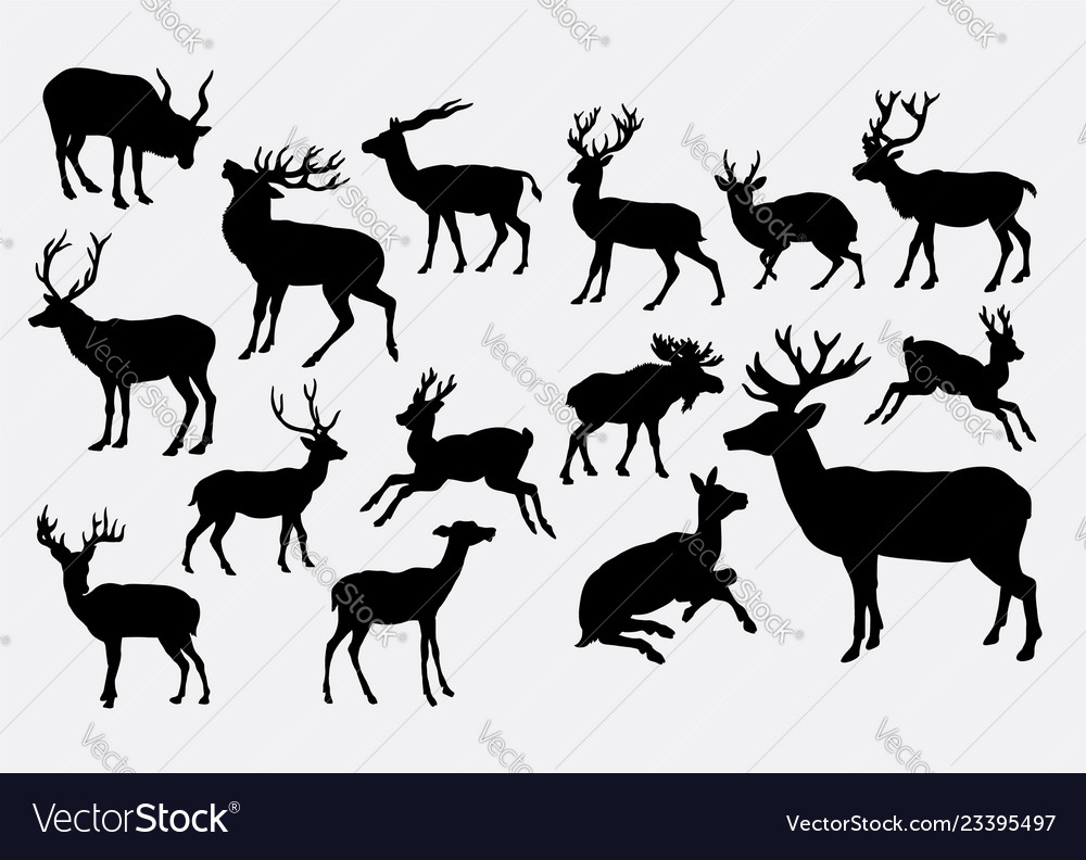 Deer animal activity silhouette