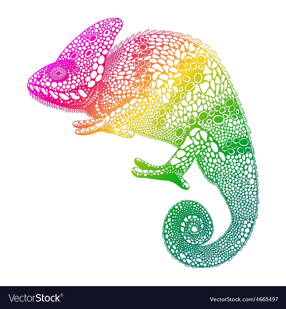 Zentangle stylized multi coloured Chameleon Hand vector image