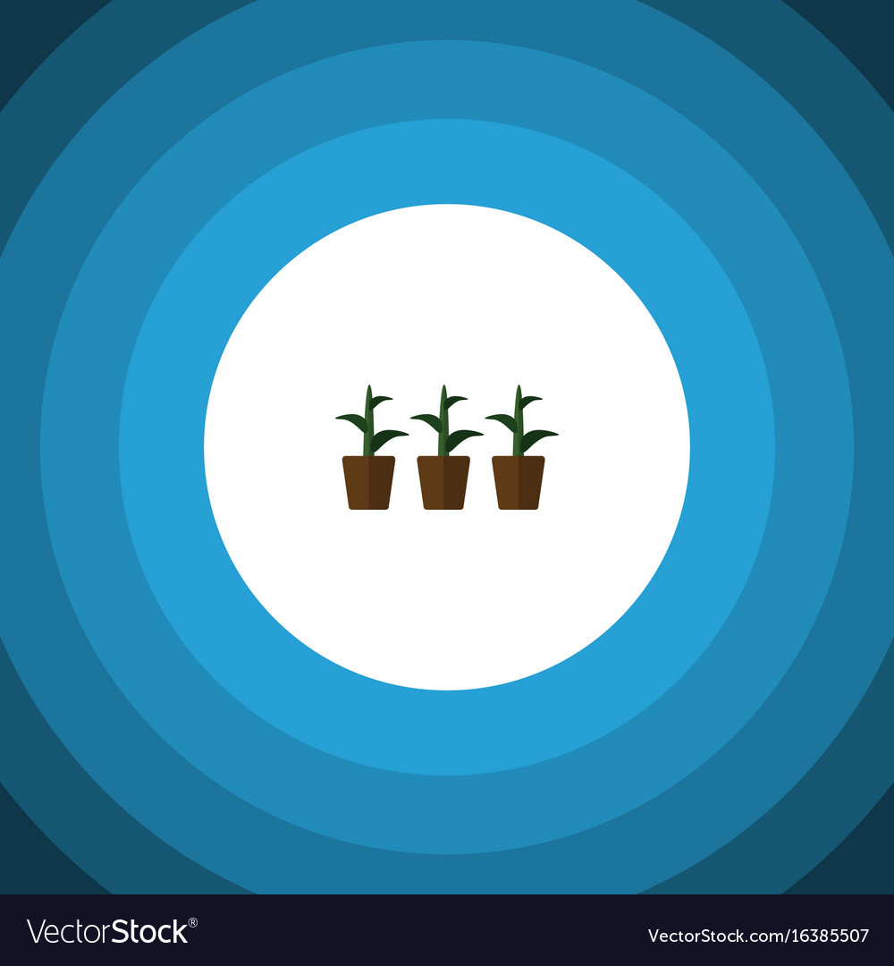 Isolated plant flat icon flowerpot element