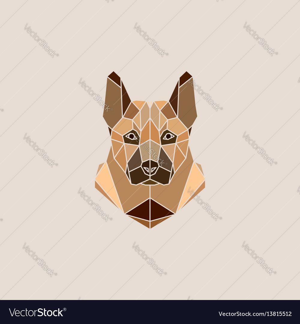 German shepherd dog portrait