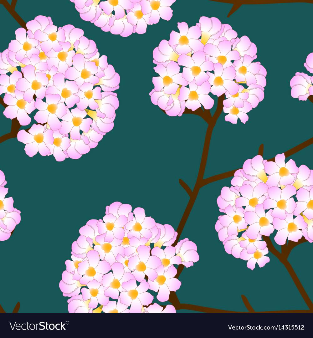 Pink trumpet flower on green background vector image